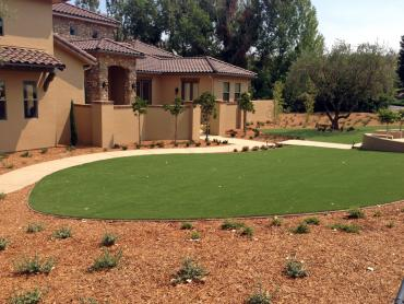 Artificial Grass Photos: Grass Turf Marco, Florida Landscape Ideas, Front Yard Landscaping Ideas