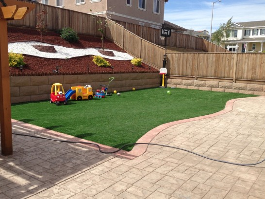 Artificial Grass Photos: Green Lawn Edgewater, Florida Playground Turf, Backyard Garden Ideas