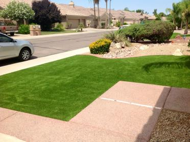 Artificial Grass Photos: Green Lawn Valparaiso, Florida Garden Ideas, Small Front Yard Landscaping