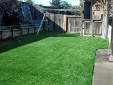 Artificial Grass Photos: How To Install Artificial Grass Daytona Beach, Florida City Landscape, Backyard Landscaping