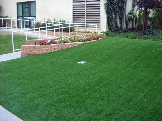 Artificial Grass Photos: How To Install Artificial Grass Kissimmee, Florida Indoor Putting Greens, Front Yard Landscaping