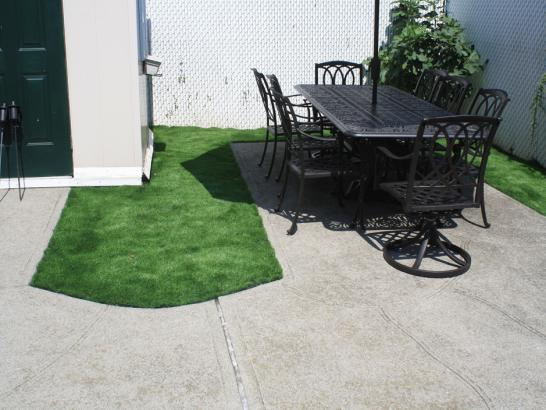 Artificial Grass Photos: How To Install Artificial Grass South Venice, Florida Landscaping Business, Backyard