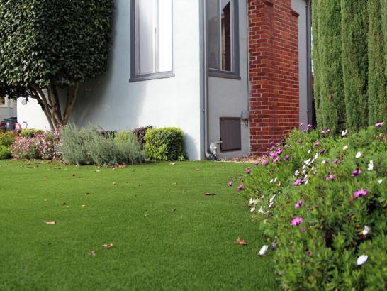 Artificial Grass Photos: Installing Artificial Grass Dania Beach, Florida City Landscape, Front Yard Landscape Ideas