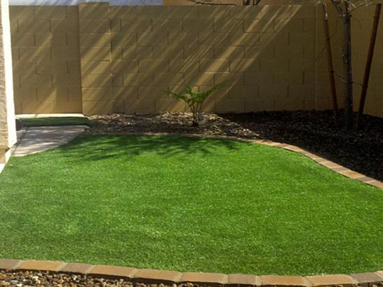 Artificial Grass Photos: Installing Artificial Grass Doctor Phillips, Florida Roof Top, Backyard Designs