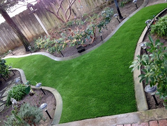 Artificial Grass Photos: Lawn Services Lecanto, Florida Design Ideas, Backyard Landscape Ideas