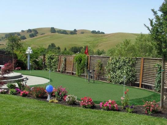 Artificial Grass Photos: Outdoor Carpet Belle Isle, Florida Roof Top, Backyard Landscaping