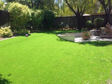Artificial Grass Photos: Outdoor Carpet Egypt Lake-Leto, Florida Landscape Ideas, Beautiful Backyards