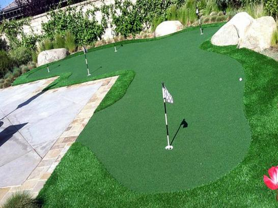Artificial Grass Photos: Outdoor Carpet Hudson, Florida Putting Green Turf, Backyard Landscaping