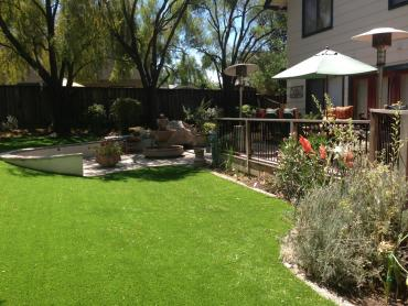 Artificial Grass Photos: Outdoor Carpet Orlovista, Florida Roof Top, Backyard Landscape Ideas