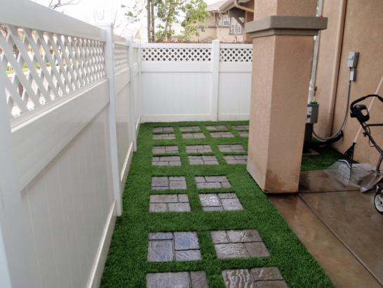 Artificial Grass Photos: Plastic Grass Inverness Highlands South, Florida Garden Ideas, Backyard Garden Ideas