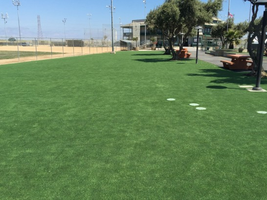 Artificial Grass Photos: Synthetic Grass Brownsville, Florida Landscaping, Recreational Areas