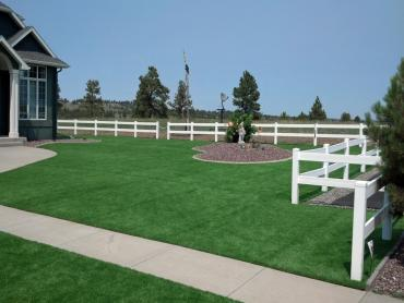 Synthetic Grass Cost Broadview Park, Florida Backyard Deck Ideas, Front Yard Ideas artificial grass