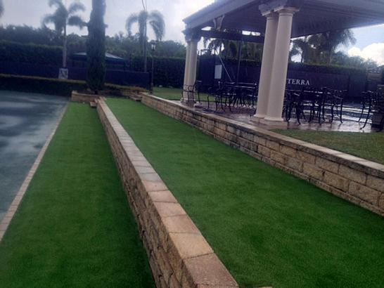 Artificial Grass Photos: Synthetic Grass Cost Clewiston, Florida Roof Top, Commercial Landscape