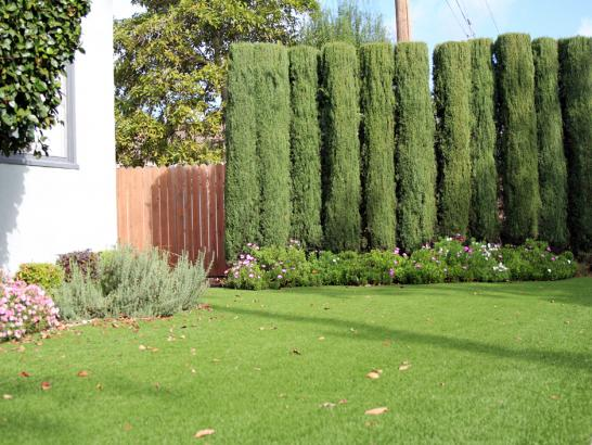 Artificial Grass Photos: Synthetic Grass Cost Spring Hill, Florida Roof Top, Front Yard Landscaping Ideas