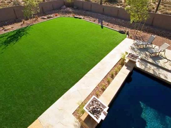 Artificial Grass Photos: Synthetic Grass Cost Thonotosassa, Florida Landscape Ideas, Backyard Design