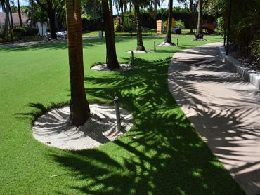 Artificial Grass Photos: Synthetic Grass Cost Trinity, Florida Lawn And Landscape, Commercial Landscape