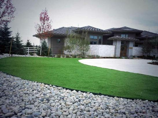 Artificial Grass Photos: Synthetic Grass Fern Park, Florida Roof Top, Front Yard Landscape Ideas