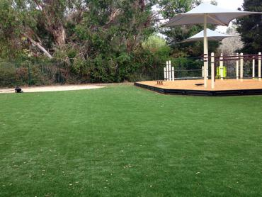 Artificial Grass Photos: Synthetic Grass Samsula-Spruce Creek, Florida Indoor Playground