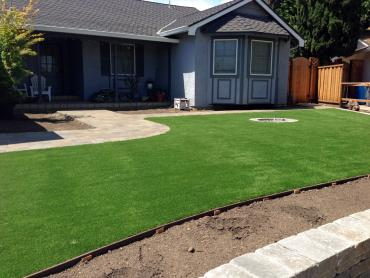 Artificial Grass Photos: Synthetic Lawn Keystone, Florida Landscaping, Front Yard Design