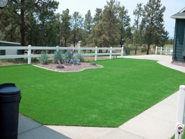 Artificial Grass Photos: Synthetic Turf Gibsonton, Florida Landscaping Business, Landscaping Ideas For Front Yard