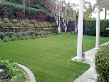 Artificial Grass Photos: Synthetic Turf Hernando, Florida Landscape Rock, Beautiful Backyards