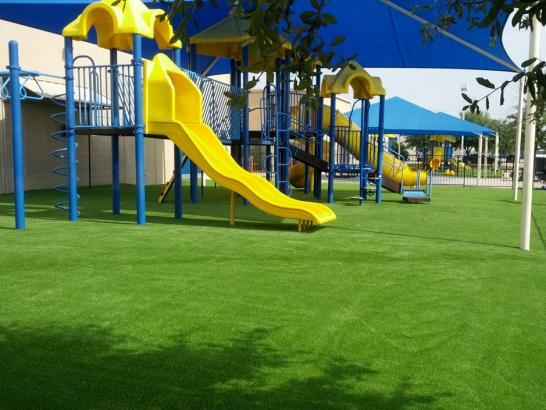 Artificial Grass Photos: Synthetic Turf Laurel, Florida Playground Flooring, Commercial Landscape