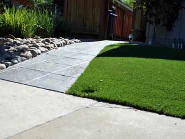 Artificial Grass Photos: Synthetic Turf Marianna, Florida Backyard Deck Ideas, Small Front Yard Landscaping