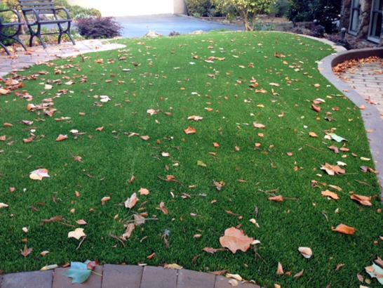 Artificial Grass Photos: Synthetic Turf Pelican Bay, Florida Roof Top, Front Yard Landscape Ideas