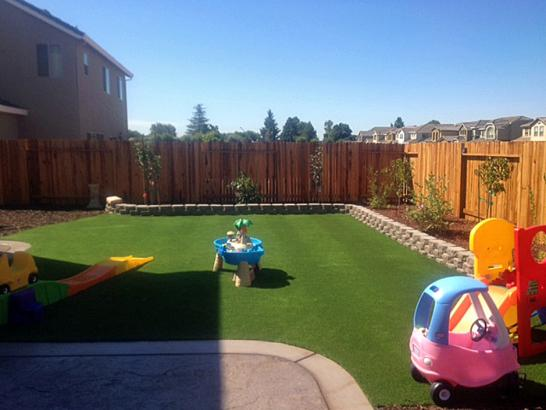 Artificial Grass Photos: Synthetic Turf Poinciana, Florida Landscaping Business, Backyard Designs