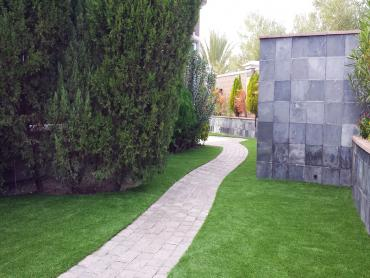 Synthetic Turf Port Saint John, Florida Lawn And Garden, Commercial Landscape artificial grass