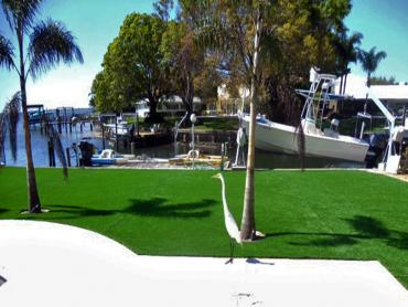 Artificial Grass Photos: Synthetic Turf South Gate Ridge, Florida City Landscape, Backyard Landscaping