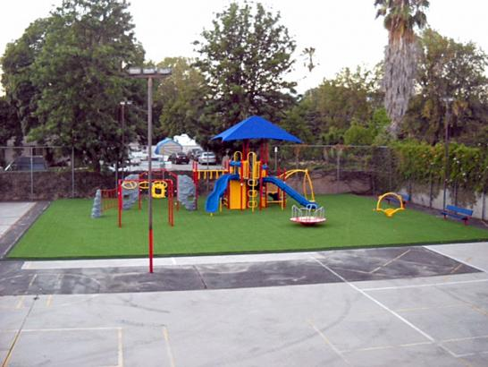 Artificial Grass Photos: Synthetic Turf Supplier Bayshore Gardens, Florida Athletic Playground, Commercial Landscape