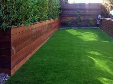 Artificial Grass Photos: Synthetic Turf Supplier Heathrow, Florida Landscape Ideas, Beautiful Backyards