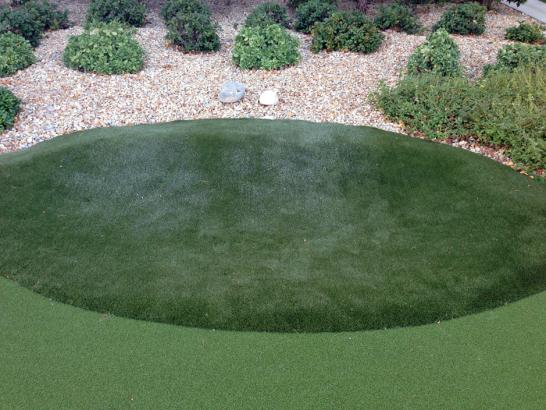 Artificial Grass Photos: Synthetic Turf Venice, Florida Indoor Putting Greens