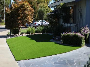 Artificial Grass Photos: Turf Grass Atlantic Beach, Florida Landscape Rock, Front Yard Design