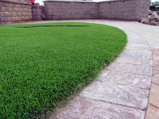 Artificial Grass Photos: Turf Grass Cantonment, Florida Home And Garden, Front Yard