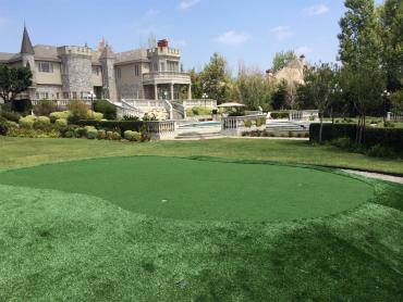 Artificial Grass Photos: Turf Grass Gateway, Florida Indoor Putting Greens, Front Yard Landscape Ideas