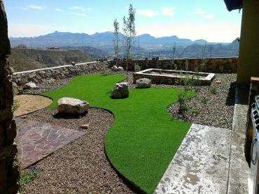 Artificial Grass Photos: Turf Grass North Andrews Gardens, Florida Landscaping Business, Small Backyard Ideas