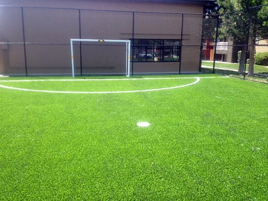 Artificial Grass Photos: Turf Grass Temple Terrace, Florida Roof Top