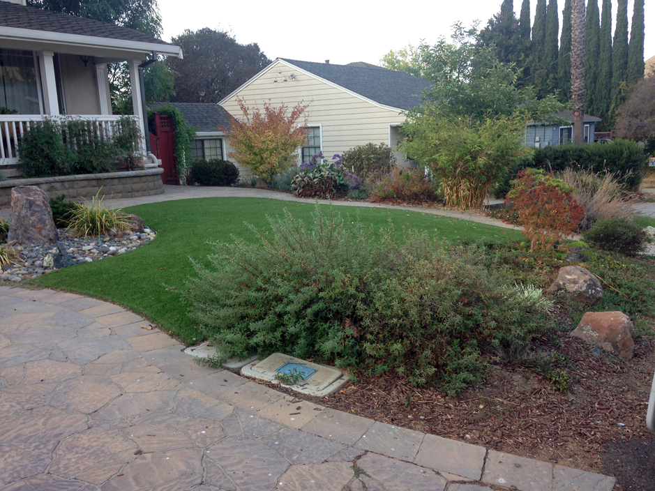 Synthetic Grass Fort Myers Beach Florida Landscaping Business Front Yard Design