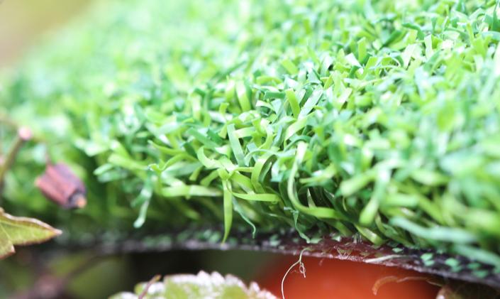 Artificial Grass Putting Green Grass