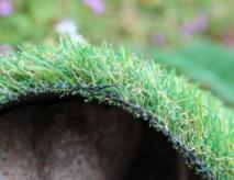 Replacement Pet Grass For Dogs And Cats