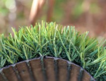 Artificial Pet Grass